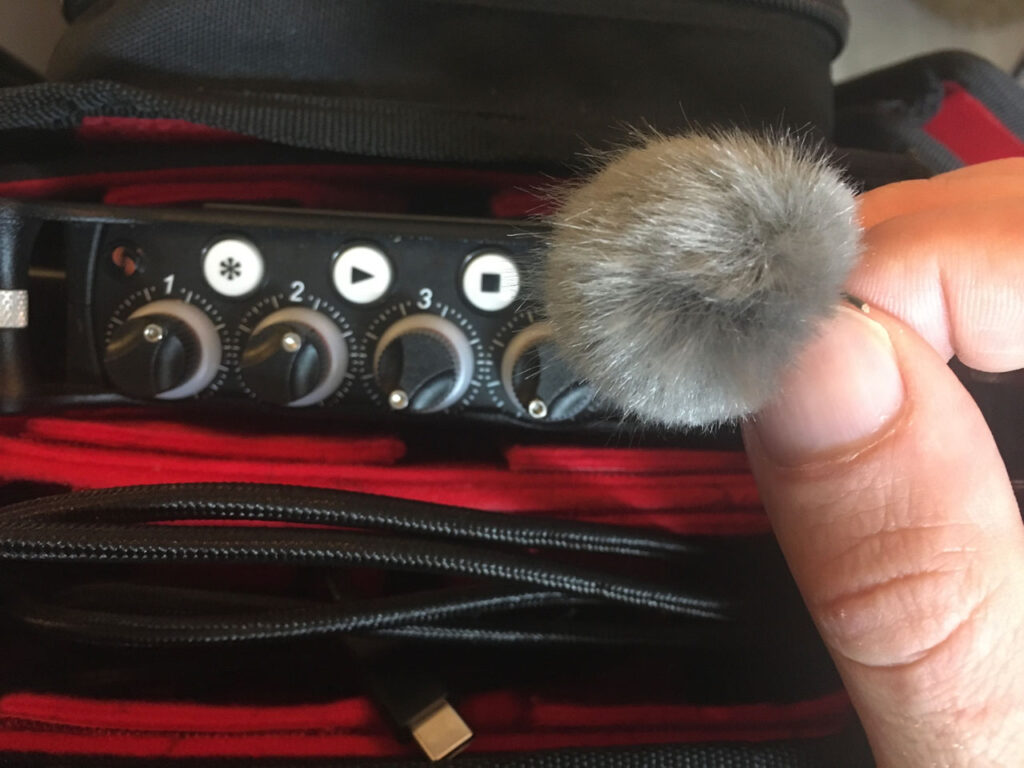 A very small microphone. About the size of a thumb nail.