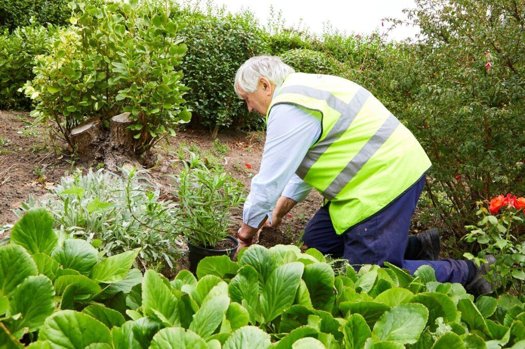 A volunteer at work